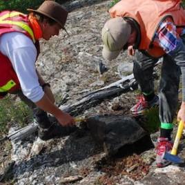 L'analyse de roches continentales vieilles de 4 milliards d'années trouvées au nord de Yellowknife améliore notre compréhension de la formation des premiers continents. (Crédit : Ron Reimink)