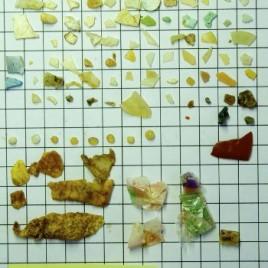 Plastique trouvé dans l'estomac d'un Fulmar boréal sur l'Île de Sable en Nouvelle-Écosse. (Photo: A.L. Bond)