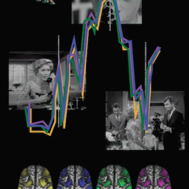 "People watching the same movie, Alfred Hitchock's ""Bang! You're Dead!"" for instance, will have synchronized brain activity in high-level frontal and parietal brain regions. (Artwork by Rhodri Cusack)"