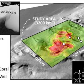 Carte de la contamination du plancher océanique autour du puits Mancondo où la plate-forme pétrolière Deepwater Horizon opérait dans le golfe du Mexique. Les points indiquent les coraux affectés. En bas à droite se trouve la structure moléculaire de l'hopane (Image courtoisie de G. Burch Fisher.)