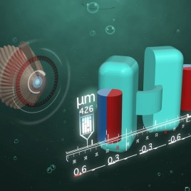 À gauche, un schéma d'un pétoncle qui avance en ouvrant et fermant sa coquille. À droite, un dessin 3D d'un microrobot en forme de pétoncle avec ses coquilles en turquoise et les aimants contrôlant l'ouverture de celles-ci en rouge et bleu. (Image: Alejandro Posada, Institut Max Planck)