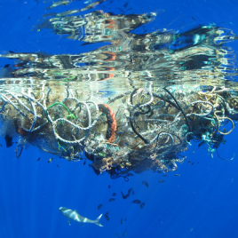 Thousands of pieces of garbage, like these tangled ropes and nets, are polluting oceans across the globe. (Photo credit: Lindsey Hoshaw via Steven Guerrisi, flickr.com)
