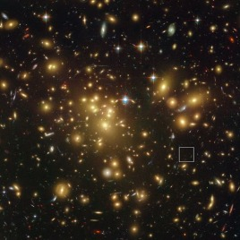 The galaxy A1689-zD1 is located in the box although it is still so faint that it is barely seen in this picture. Until now astronomers were worried that such distant galaxies would not be detectable using the currently available equipment. (Image courtesy of NASA; ESA; L. Bradley (Johns Hopkins University); R. Bouwens (University of California, Santa Cruz); H. Ford (Johns Hopkins University); and G. Illingworth (University of California, Santa Cruz))