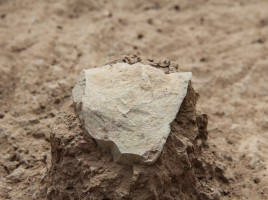 A stone tool unearthed at excavation site. (Photo Credit: MPK-WTAP)