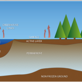 Permafrost is soil that remains below the freezing point of water from one year to the next, resulting in permanently frozen water particles in the soil. (Image created by the PAGE21 project)