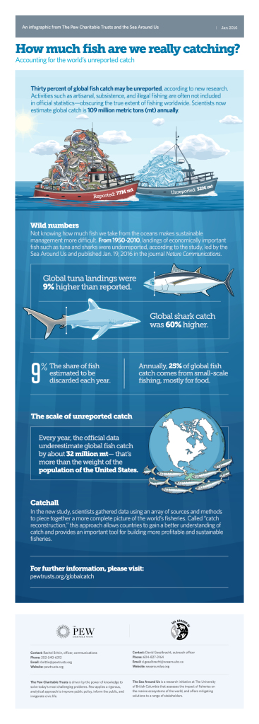 How much fish are we really catching? (Infographic courtesy of The Pew Charitable Trusts)