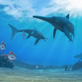 wo ichthyosaurs (Pervushovisaurus bannovkensis) wandering in an artist's impression. (Image credit: Andrey Atuchin)