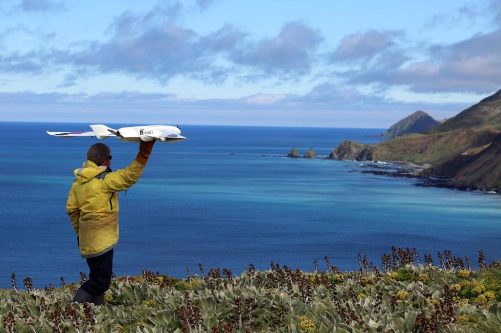 Ecologist Jarrod Hodgson launches a fixed-wing UAV on Australia's sub-Antarctic Macquarie Island. (Photo courtesy of Jarrod Hodgson via EurekAlert!)